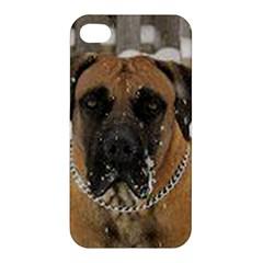 Boerboel  Apple iPhone 4/4S Hardshell Case