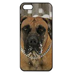 Boerboel  Apple iPhone 5 Seamless Case (Black)
