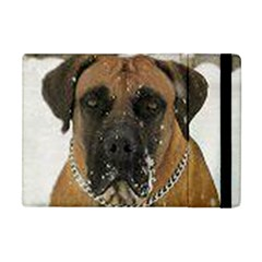 Boerboel  Apple iPad Mini Flip Case