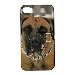 Boerboel  Apple iPhone 4/4S Hardshell Case with Stand