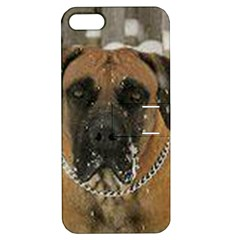 Boerboel  Apple iPhone 5 Hardshell Case with Stand