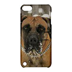 Boerboel  Apple iPod Touch 5 Hardshell Case with Stand
