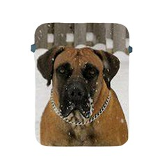 Boerboel  Apple iPad 2/3/4 Protective Soft Cases
