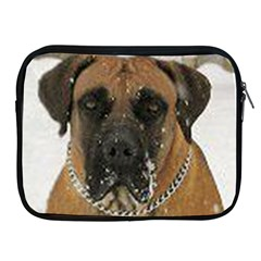 Boerboel  Apple iPad 2/3/4 Zipper Cases