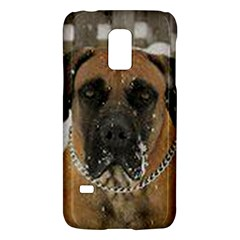 Boerboel  Galaxy S5 Mini