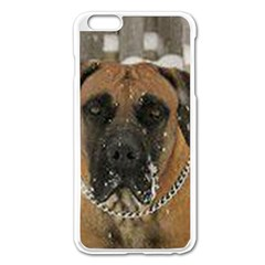 Boerboel  Apple iPhone 6 Plus/6S Plus Enamel White Case