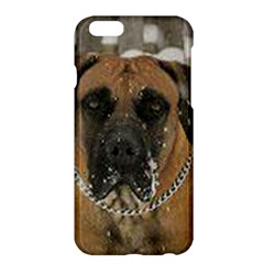 Boerboel  Apple iPhone 6 Plus/6S Plus Hardshell Case