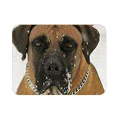 Boerboel  Double Sided Flano Blanket (Mini)