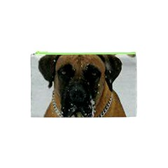 Boerboel  Cosmetic Bag (XS)
