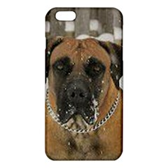 Boerboel  iPhone 6 Plus/6S Plus TPU Case