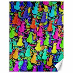 Colorful cats Canvas 12  x 16