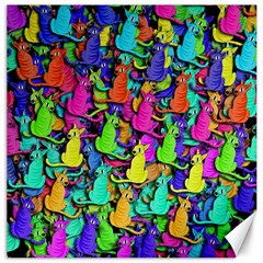 Colorful cats Canvas 20  x 20