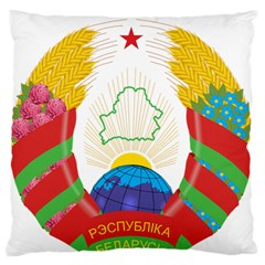 Coat of Arms of The Republic of Belarus Standard Flano Cushion Case (One Side)