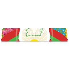 Coat of Arms of The Republic of Belarus Flano Scarf (Small)