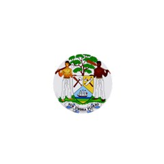 Coat of Arms of Belize 1  Mini Magnets