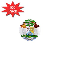 Coat of Arms of Belize 1  Mini Magnets (100 pack)