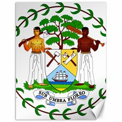 Coat of Arms of Belize Canvas 12  x 16
