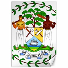 Coat of Arms of Belize Canvas 12  x 18
