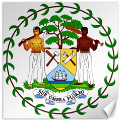 Coat of Arms of Belize Canvas 16  x 16