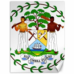 Coat of Arms of Belize Canvas 36  x 48