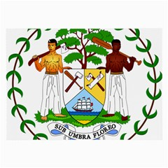 Coat of Arms of Belize Large Glasses Cloth (2-Side)