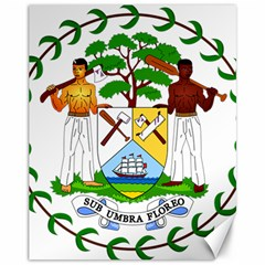 Coat of Arms of Belize Canvas 11  x 14