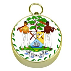 Coat of Arms of Belize Gold Compasses