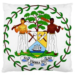 Coat of Arms of Belize Large Flano Cushion Case (One Side)