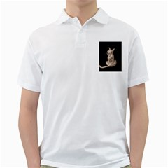 Brown abstract cat Golf Shirts