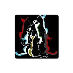Street cats Square Magnet