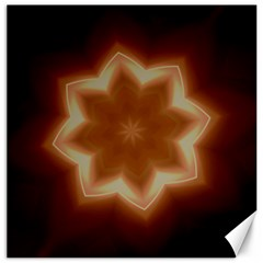 Christmas Flower Star Light Kaleidoscopic Design Canvas 12  x 12