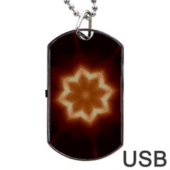 Christmas Flower Star Light Kaleidoscopic Design Dog Tag USB Flash (Two Sides)