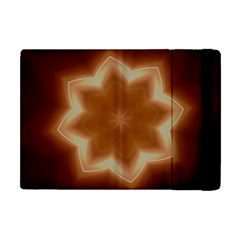 Christmas Flower Star Light Kaleidoscopic Design Apple iPad Mini Flip Case