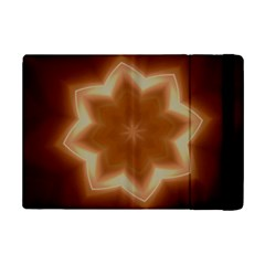 Christmas Flower Star Light Kaleidoscopic Design iPad Mini 2 Flip Cases