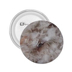 Down Comforter Feathers Goose Duck Feather Photography 2.25  Buttons
