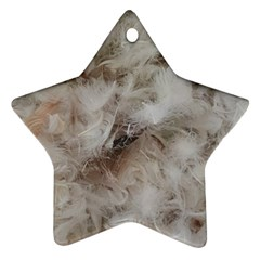 Down Comforter Feathers Goose Duck Feather Photography Ornament (Star)