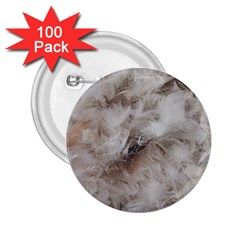 Down Comforter Feathers Goose Duck Feather Photography 2.25  Buttons (100 pack)