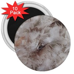 Down Comforter Feathers Goose Duck Feather Photography 3  Magnets (10 pack)