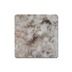 Down Comforter Feathers Goose Duck Feather Photography Square Magnet