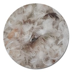 Down Comforter Feathers Goose Duck Feather Photography Magnet 5  (Round)
