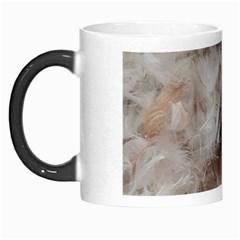 Down Comforter Feathers Goose Duck Feather Photography Morph Mugs