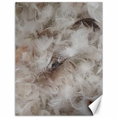 Down Comforter Feathers Goose Duck Feather Photography Canvas 12  x 16