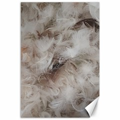 Down Comforter Feathers Goose Duck Feather Photography Canvas 12  x 18