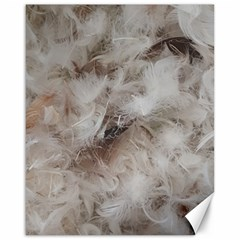 Down Comforter Feathers Goose Duck Feather Photography Canvas 16  x 20