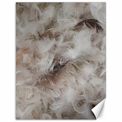 Down Comforter Feathers Goose Duck Feather Photography Canvas 18  x 24
