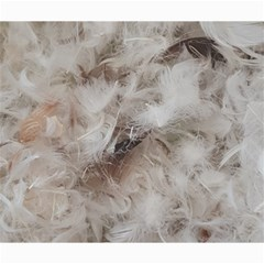 Down Comforter Feathers Goose Duck Feather Photography Canvas 20  x 24