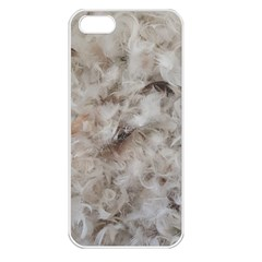 Down Comforter Feathers Goose Duck Feather Photography Apple iPhone 5 Seamless Case (White)