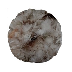 Down Comforter Feathers Goose Duck Feather Photography Standard 15  Premium Round Cushions