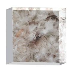 Down Comforter Feathers Goose Duck Feather Photography 5  x 5  Acrylic Photo Blocks