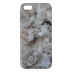 Down Comforter Feathers Goose Duck Feather Photography iPhone 5S/ SE Premium Hardshell Case
